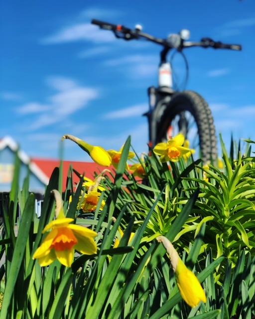 beovelo_fahrradleasing_öffentlicher_dienst